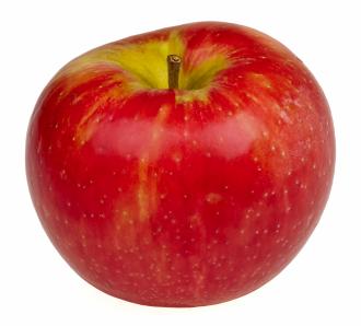 リンゴ528